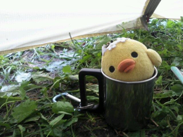 キイロイトリ秋北物語 雨の中…